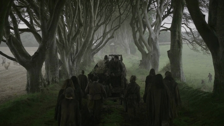 spookiest places northern ireland dark hedges