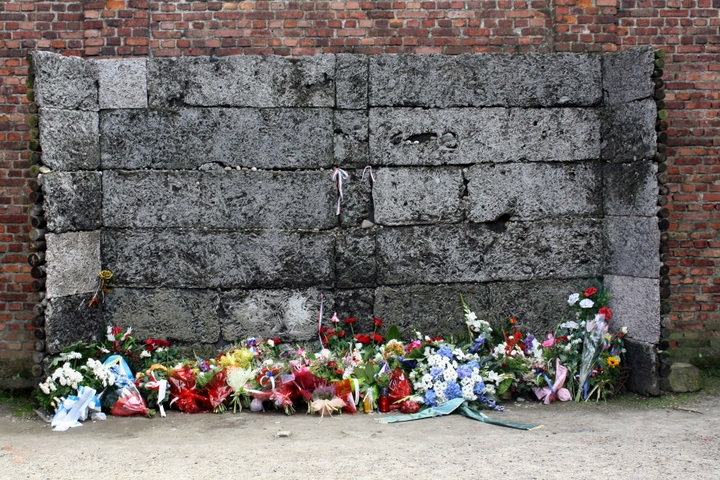 auschwitz birkenau camp execution wall